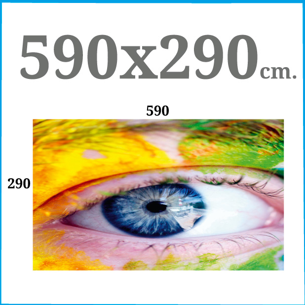 590x290