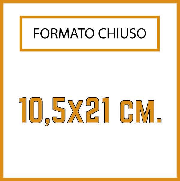 Formato 10,5 x 21 cm.